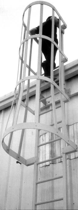 Safety Ladders & Cage Systems